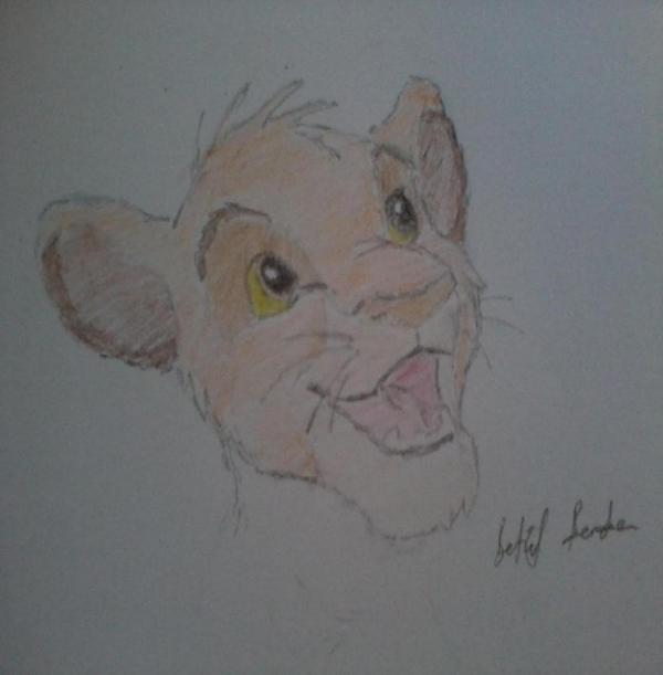 Lion King par Betul